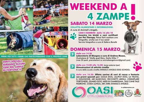 Weekend a 4 zampe