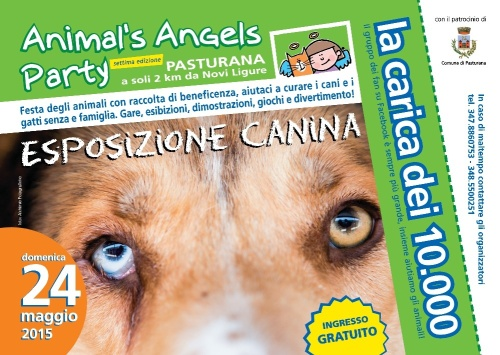 Animal's Angels Novi 2015